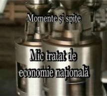 Mic tratat de economie națională – Momente și spițe (36)